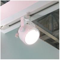 高演色LEDスポットライト